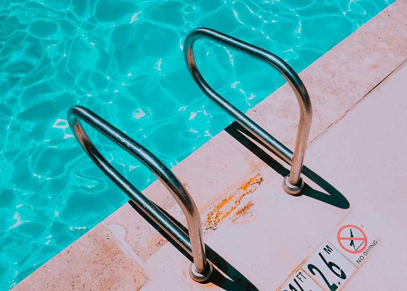 Chien à la piscine : est-ce que tous les chiens savent nager ?