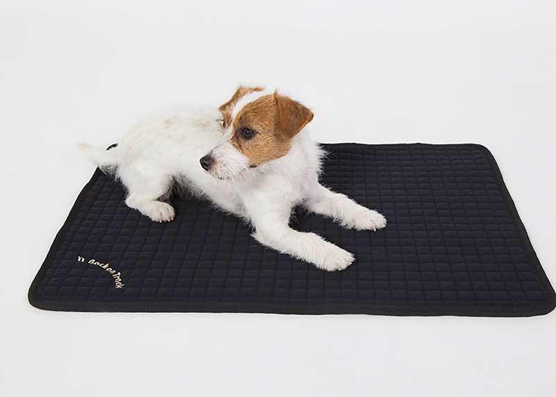 meilleur tapis pour chien