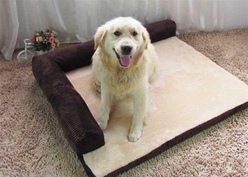 comparatif du meilleur tapis pour chien guide aout 2019. Black Bedroom Furniture Sets. Home Design Ideas