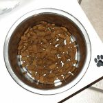 matiere des gamelles pour chien