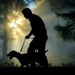 habituer chien laisse
