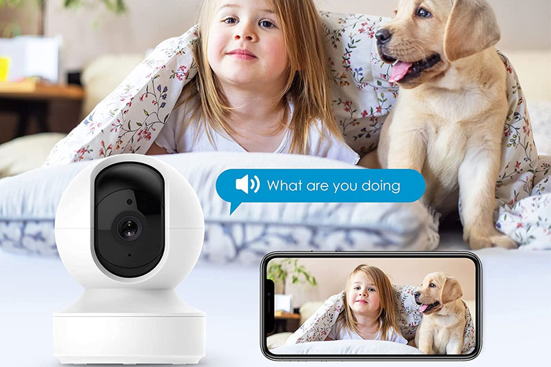 caméra pour chien