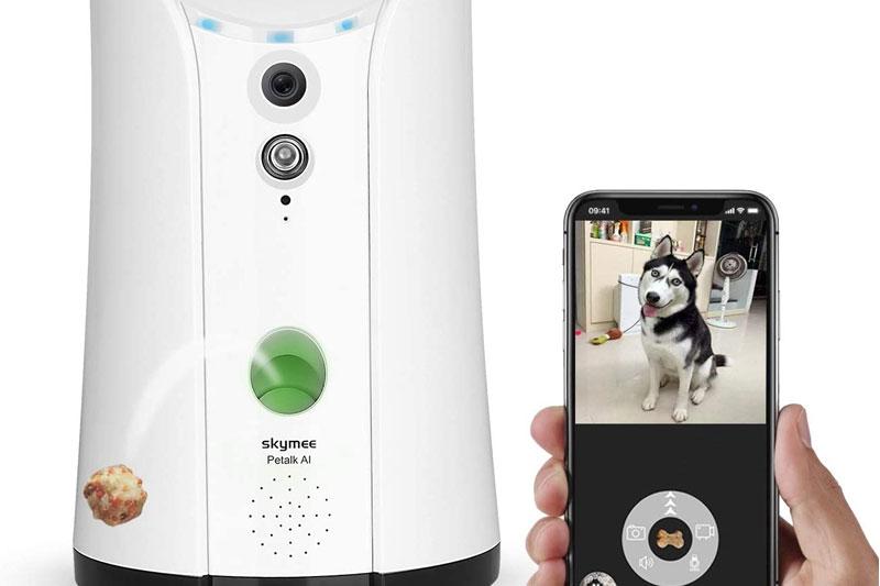 caméra de surveillance pour chien notre avis