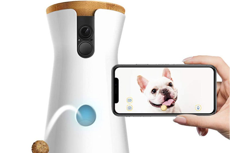 Meilleure caméra de surveillance pour chien