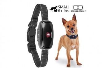 Goodboy GB07V : le collier anti-aboiement pour les petits chiens