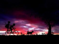 Les avantages de la remorque vélo pour chien