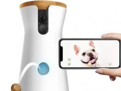 Meilleure caméra de surveillance pour chien : guide et comparatif 2021