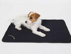 Meilleur tapis pour chien 2021